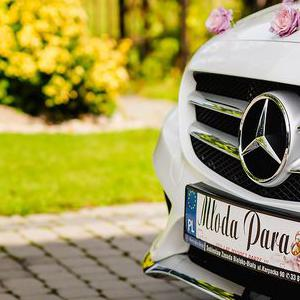 mercedes-bialy02